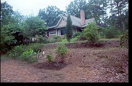 Bett Padgett Little Lake Hill image